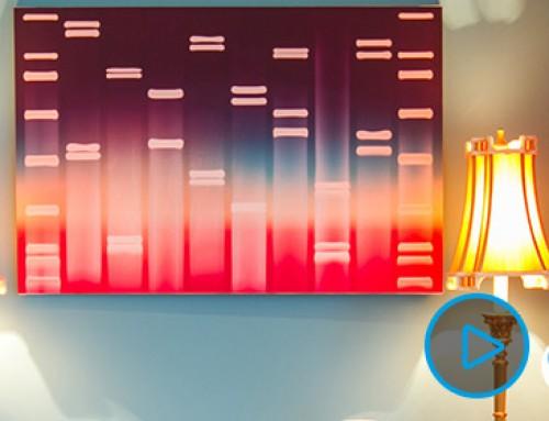DNA Bilder als Kunstwerk
